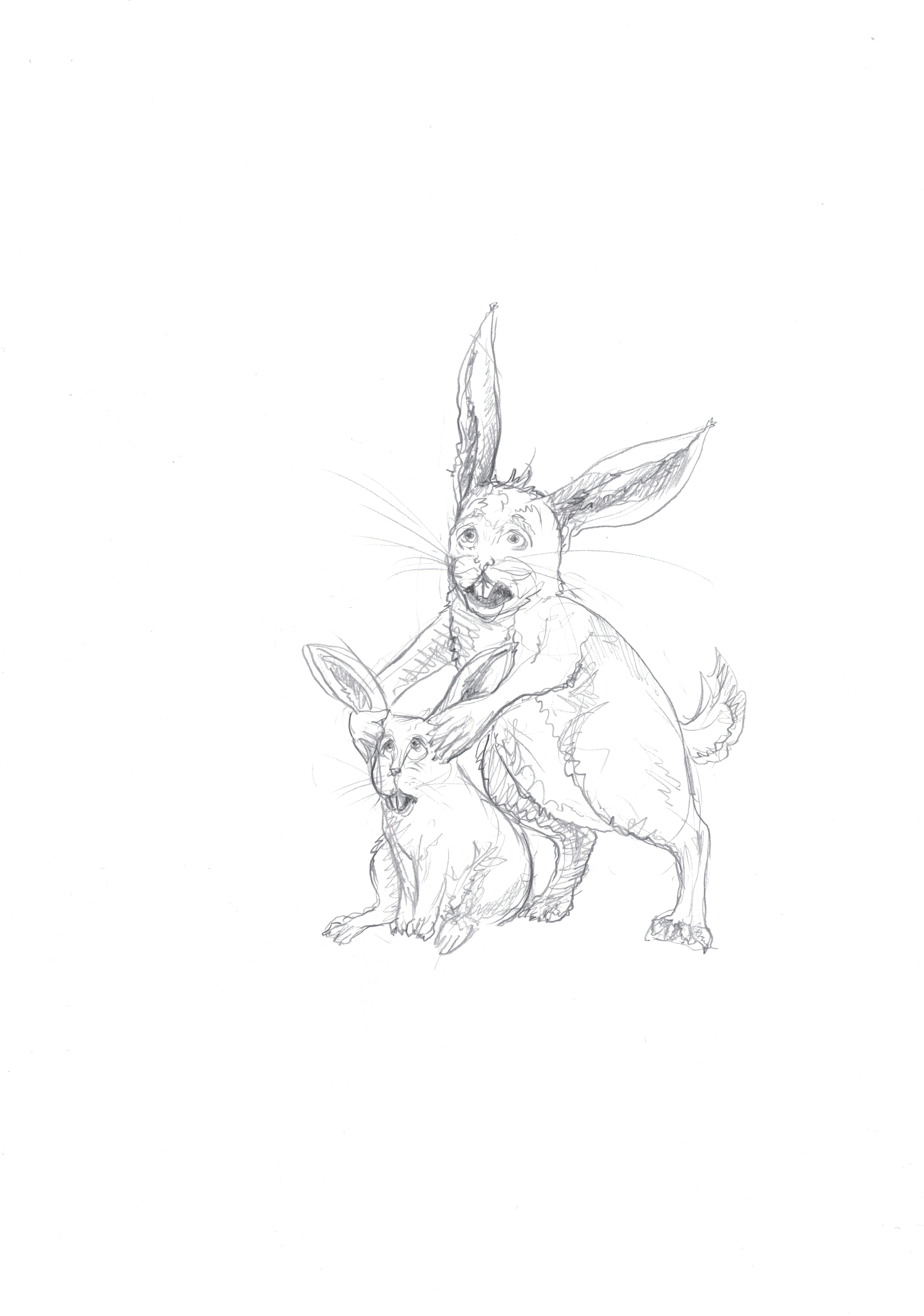 Rabbits disturbed by noise